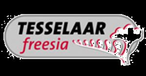 Tesselaar Freesia